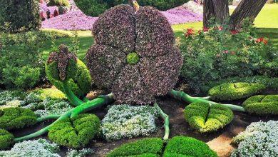 نمایشگاه باغبانی