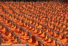 جشنواره بین المللی ووشو