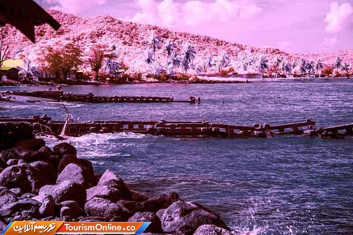 کوههای آبی جامائیکا