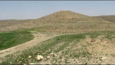 روستای حیدری
