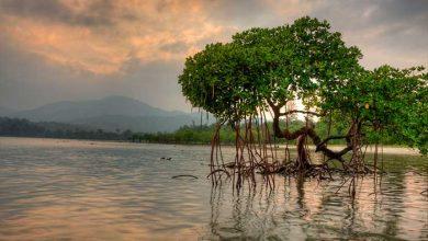 جزایر آندامان