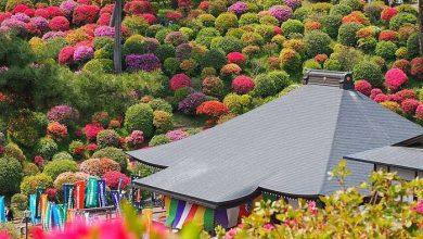 معبد بودایی