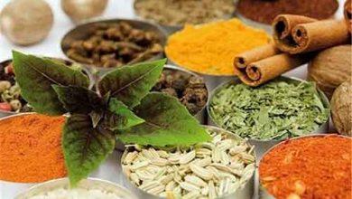 ترکیب گیاهی قوی برای جایگزینی پنیسیلین