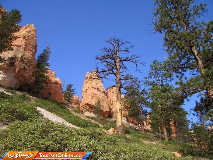 پارک ملی برایس کنیون