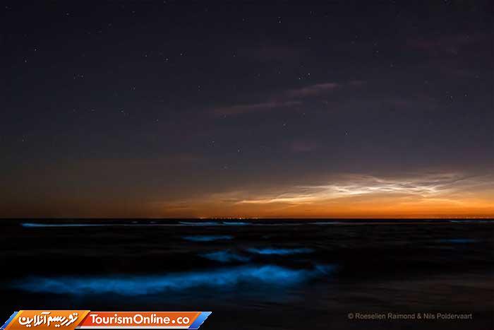 شب تاب دریایی