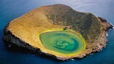 مجمعالجزایر گالاپاگوس