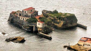 جزیره نفرین شده