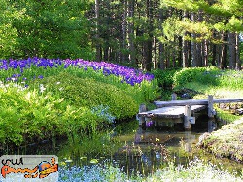 باغ های گیاه شناسی