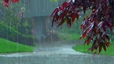 شدت بارش