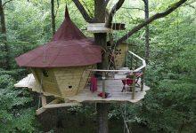 خانه درختی