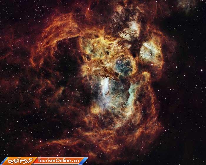 عکاس سال نجوم