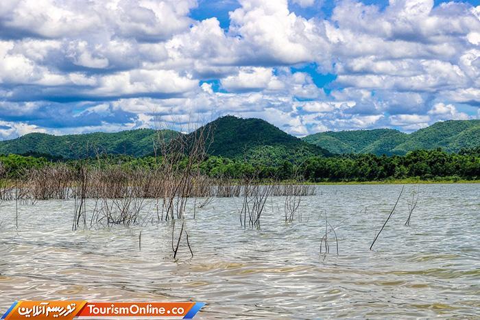 جنگلی کنگ کراچان