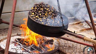 جشنواره های بین المللی غذا