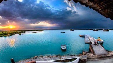 جاذبههای طبیعی خلیج فارس