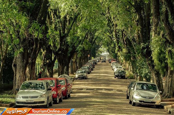 سبزترین خیابان