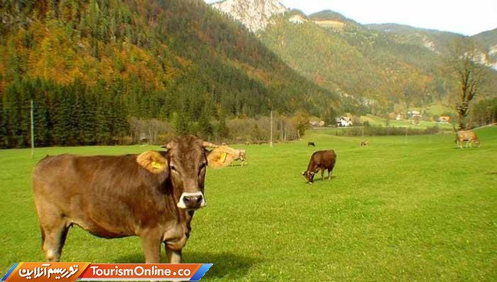 اسلوونی ؛کشوری شبیه کارت پستال!