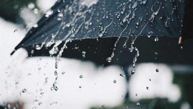 بارشها پراکنده