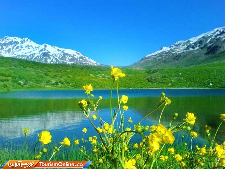 کوه گل