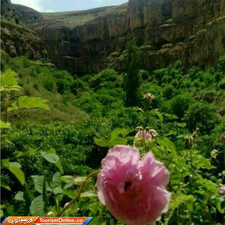 زوارم بهشت خراسان شمالی