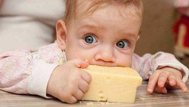 خوردن پنیر