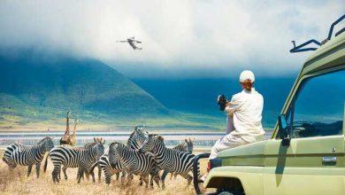 گردشگری آفریقا