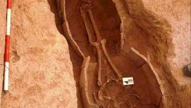 کشف گور تاریخی کردستان