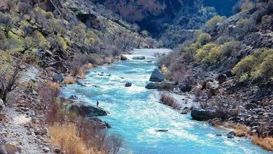 رودخانه بشار یاسوج