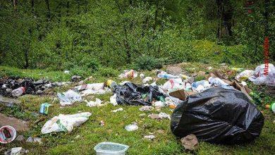 پلاستیک در طبیعت