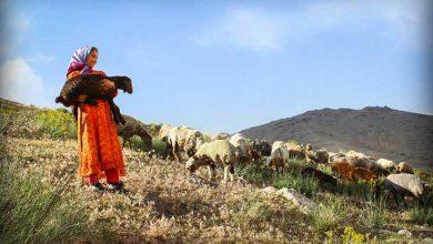 15مهر روز روستا و عشایر