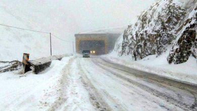 جاده هراز برفی