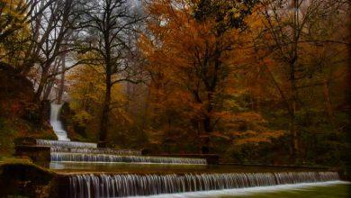 بوستان جنگلی صفارود رامسر