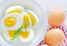مصرف تخم مرغ در دوران کرونا