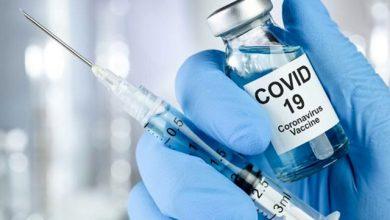 برگزاری تورهای واکسن