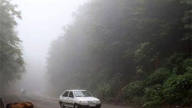 مه گرفتگی و باران در جاده