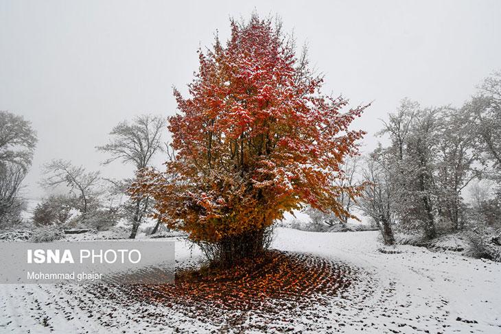 آغاز فصل زمستان