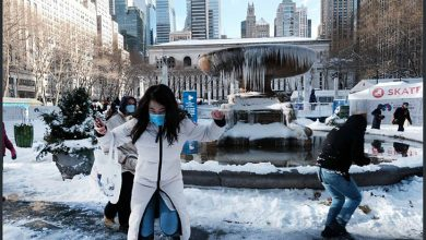 برف بازی نیویورک