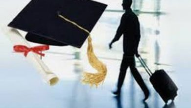 موسسه اعزام دانشجو آریا