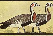 کشف مونالیزای مصری