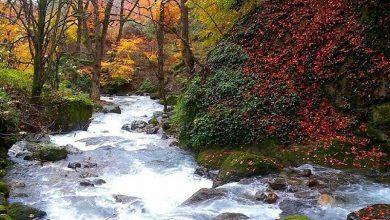 طبیعت زیبای گیلان رودبار