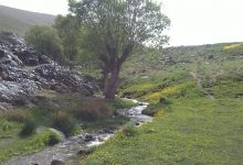 آبشار زیبای البرز