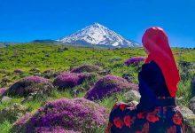 پارک ملی لار مازندران